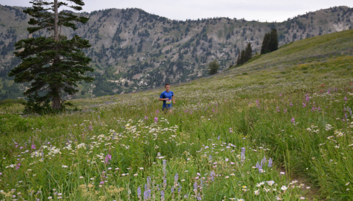 Alta - July 10th and August 14th