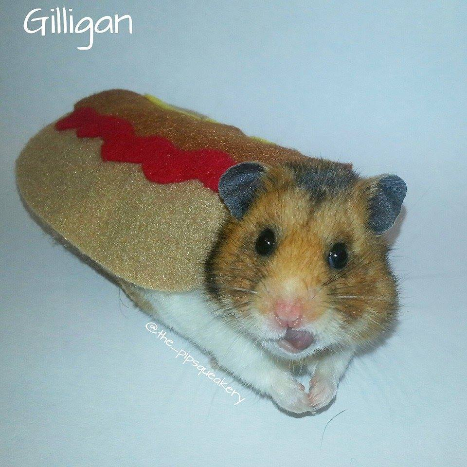 Gilligan Hernly the Hotdog
