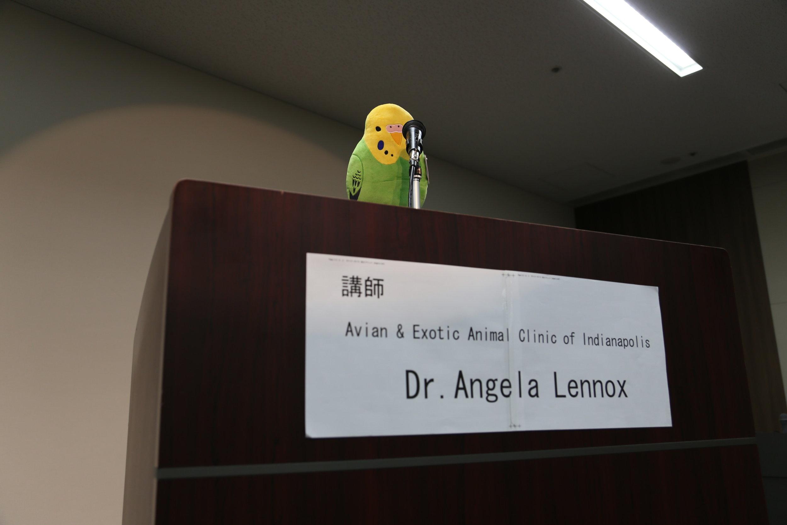 Bird Lecturer