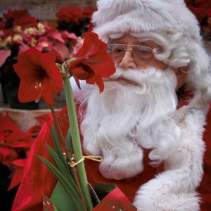 GrowIt! Santa