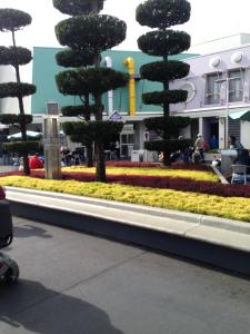 GrowIt Disney Blog 10