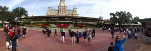 GrowIt_Poinsettia_Disney