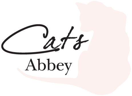 Cats Abbey