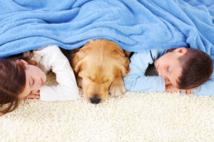 Two cute children and dog sleeping on the floor living room, covered with a blue blanket.