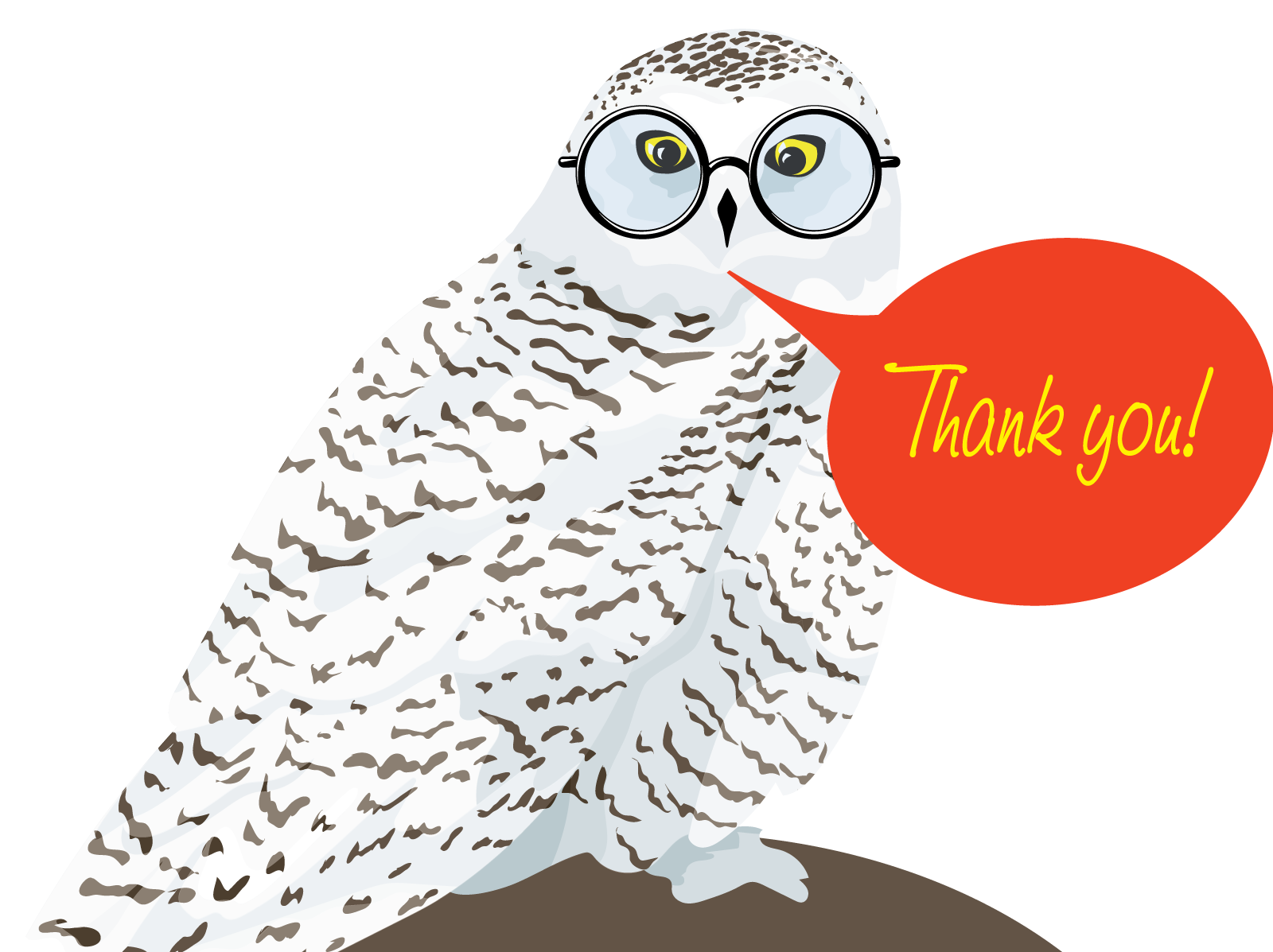 owl saying thank you
