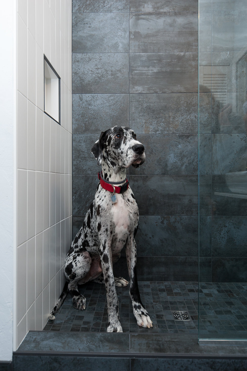 Mike's Shower -