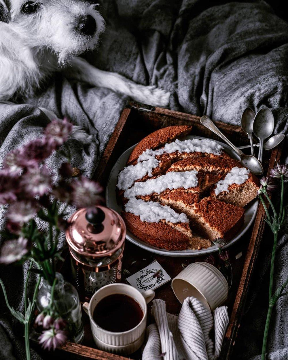Kake pa senga med hund ludo fotografering oslo mats dreyer