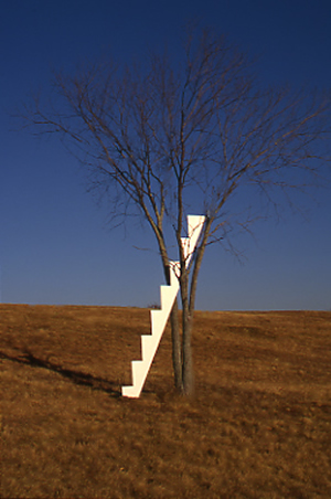 Stairway to Heaven - Painted Aluminum / American Elm TreeApproximate Dimensions: 16' Ht. x 2' x 4' Installed - 1994