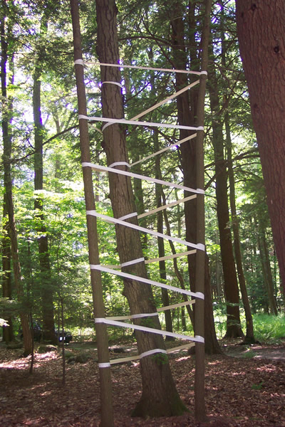 Tree Wrap - Material: White Duct Tape and 3 treesDimensions: 20' Height x 5' Width