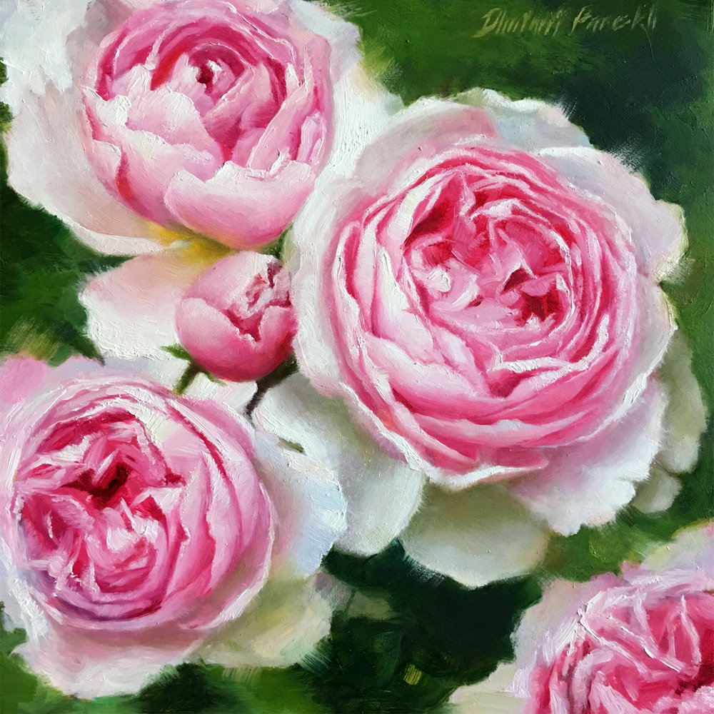 Beauty in Pink  8 x 8  Oil on Panel