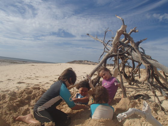 Holiday activities: Building a driftwood shelter