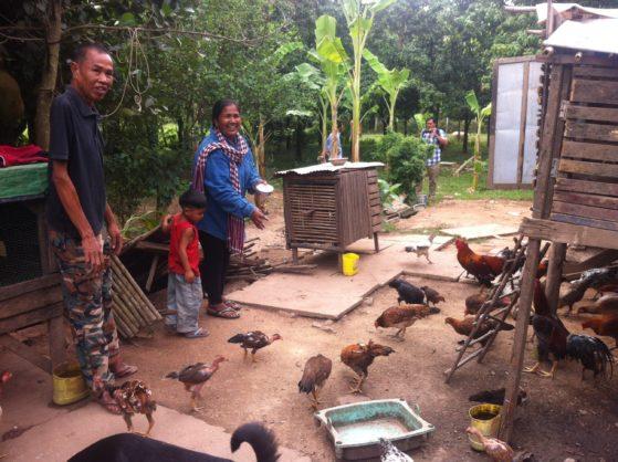 Child Rescue- feeding the chickens