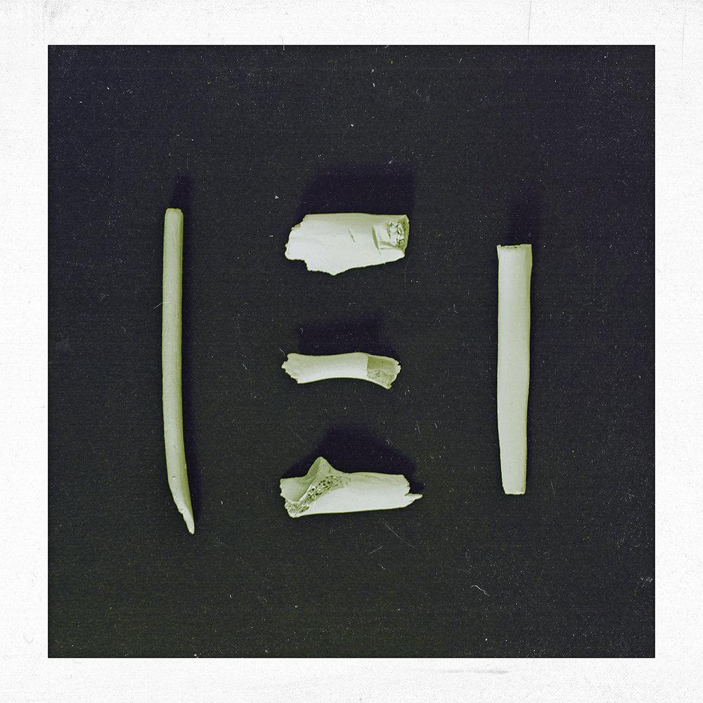 COD-1-(no-text).jpg