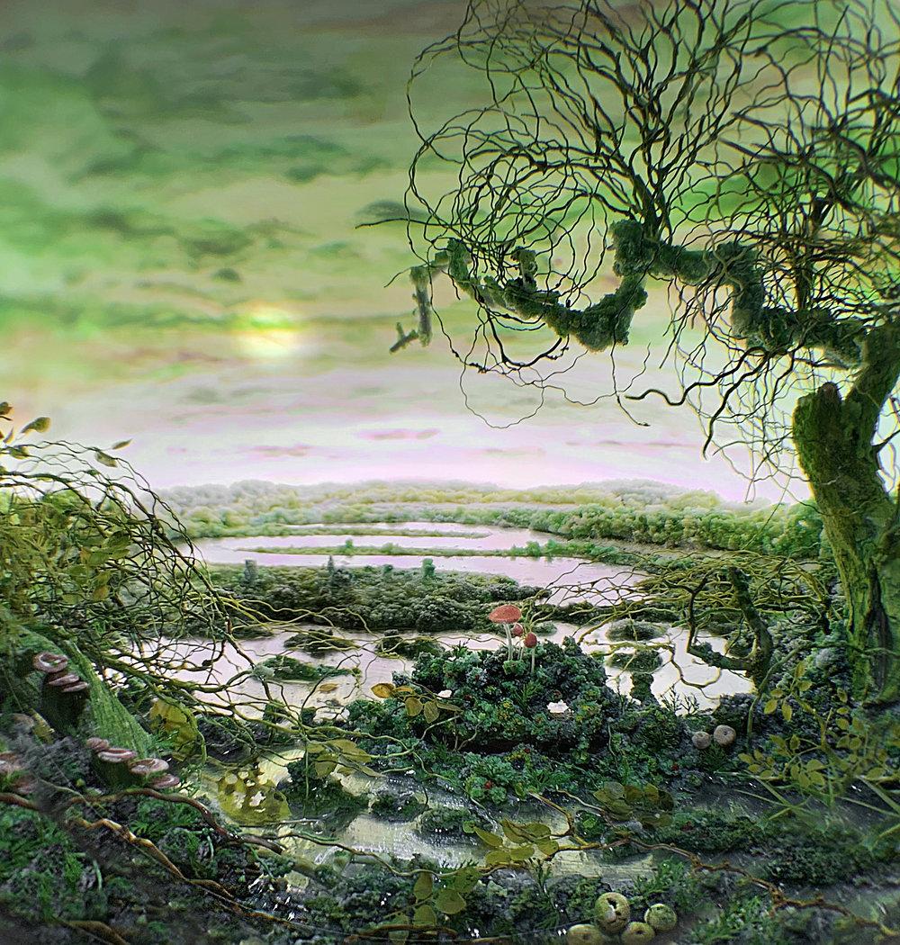 Detail: Swamp Nocturne, 2019