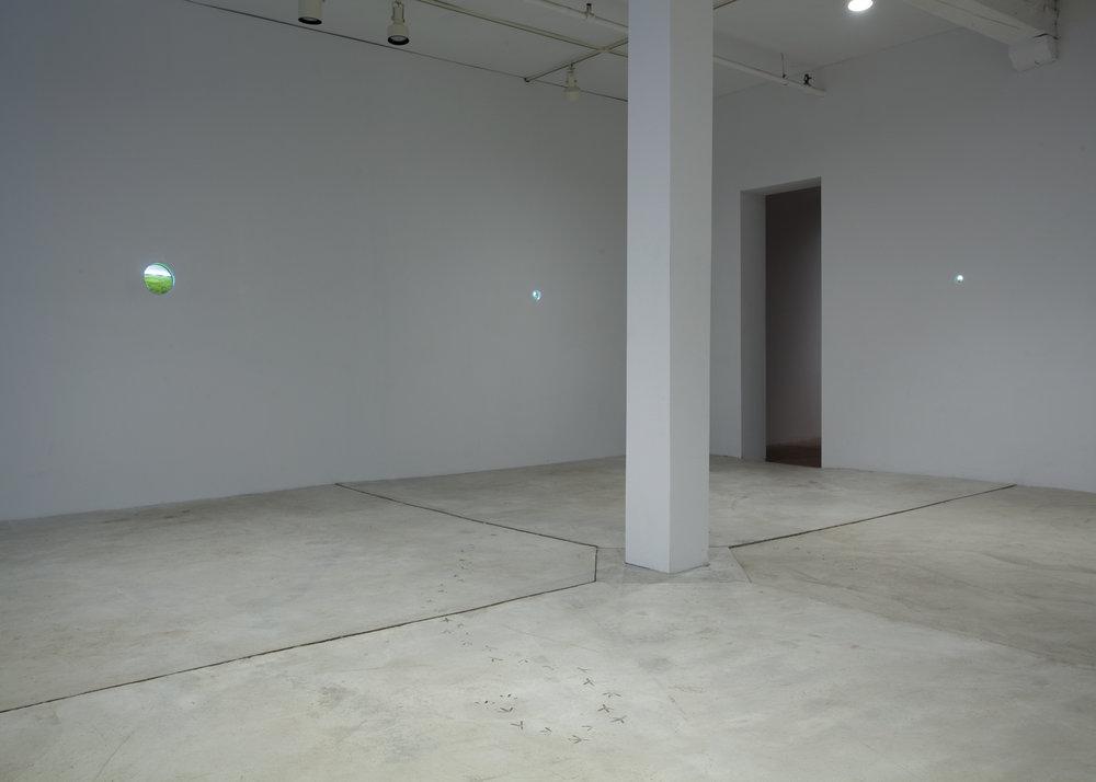 Installation View: Foreign Terrain, 2011