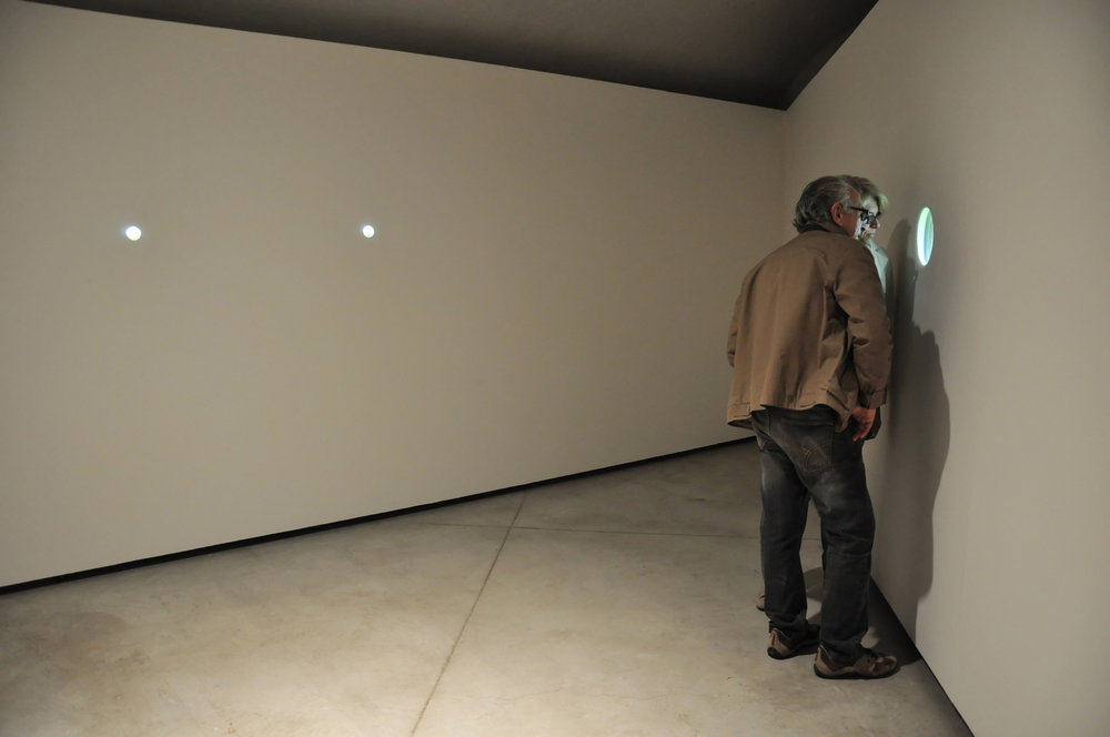 Installation View: Fairy Ring with Dandelions, 2010 - 11