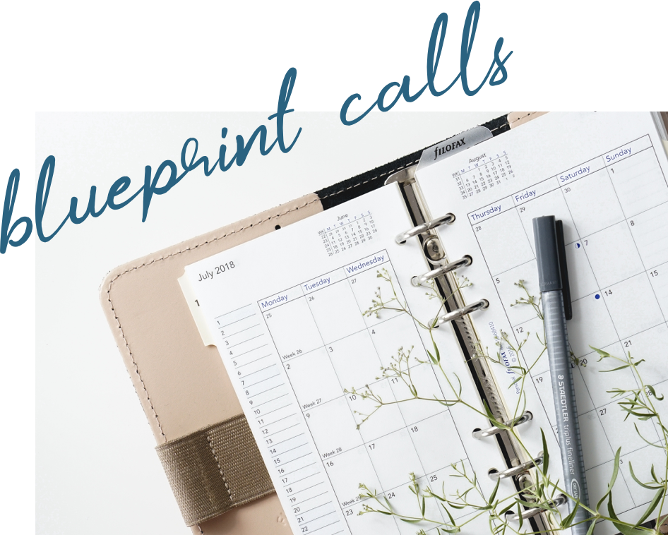 """Daily social media strategy planner with """"Blueprint Calls"""" text"""