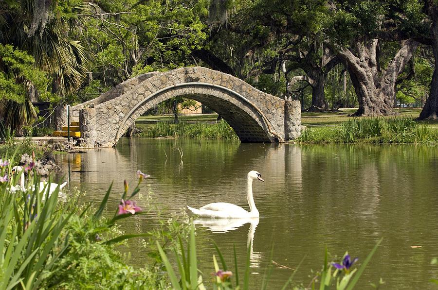 1-new-orleans-city-park-ellis-c-baldwin.jpg