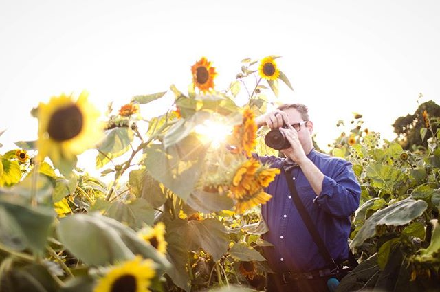 #sunflowers #photographer #sunset #behindthescenes