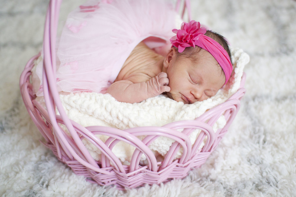 Newborn Session -