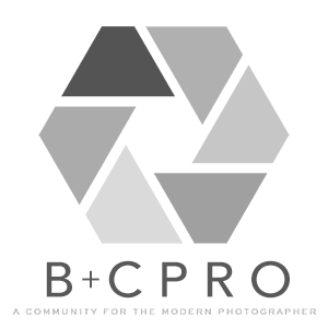 B&C Pro Badge.png