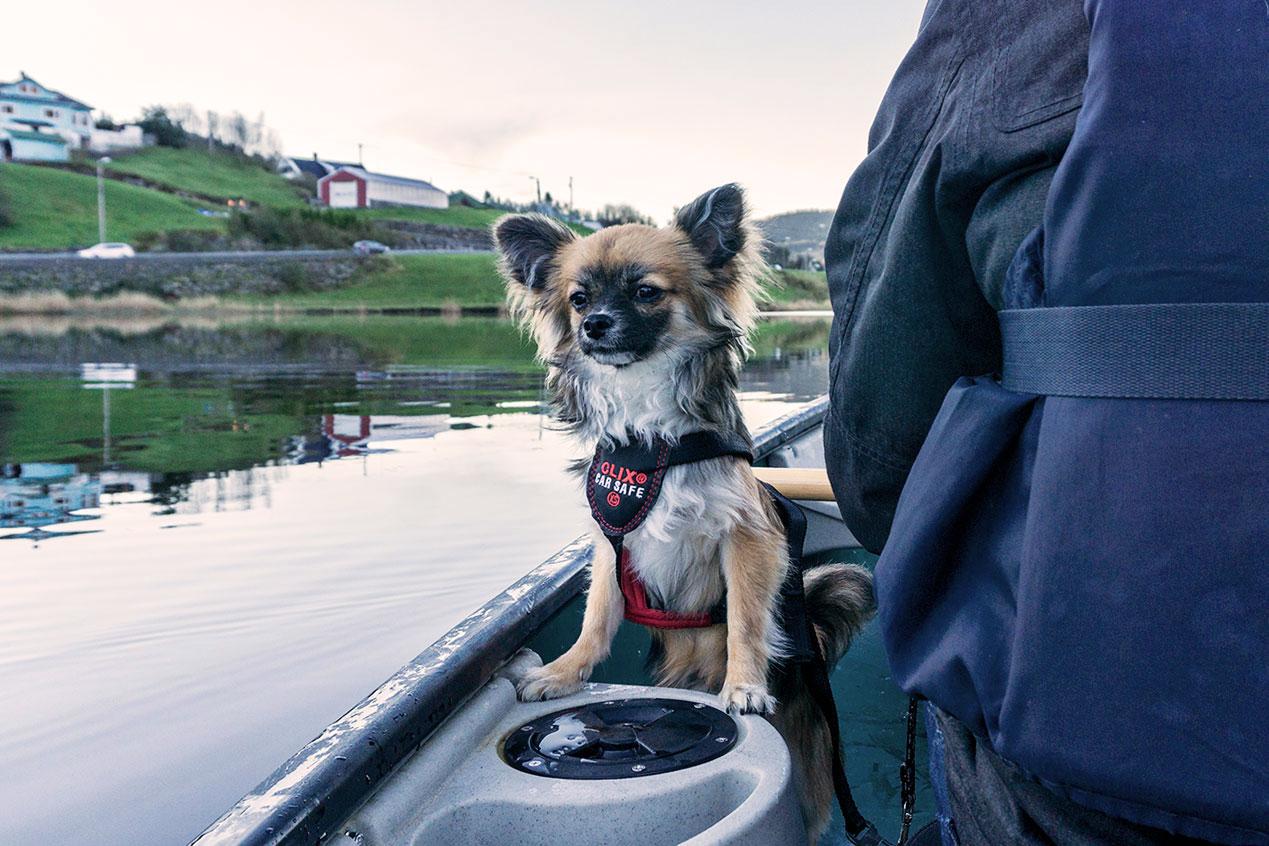 canoe_7