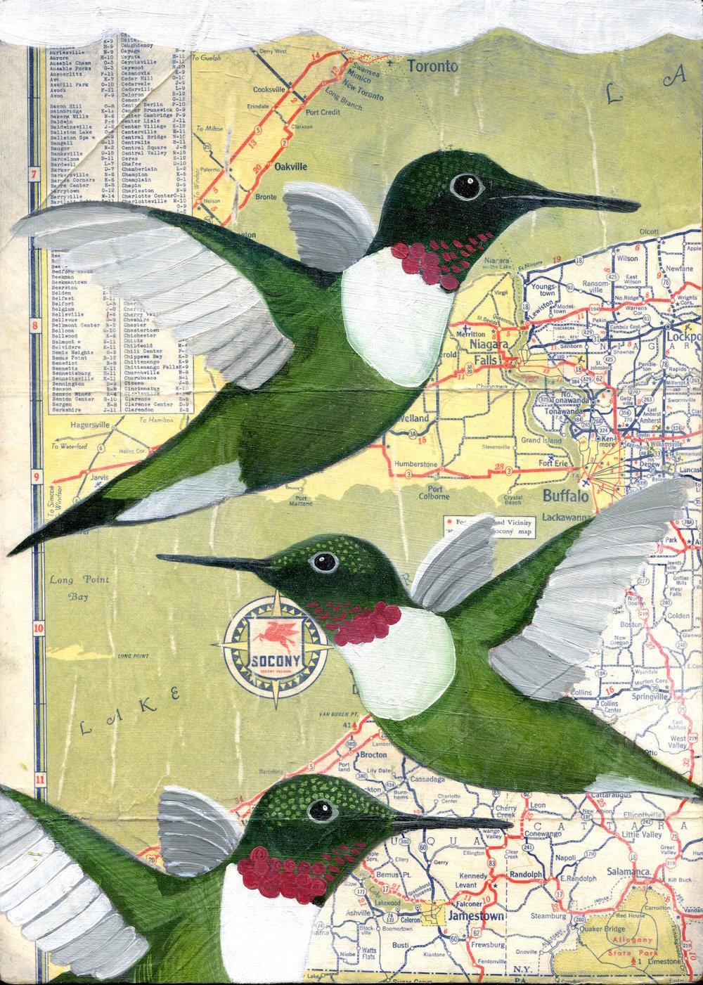 3 hummingbirds
