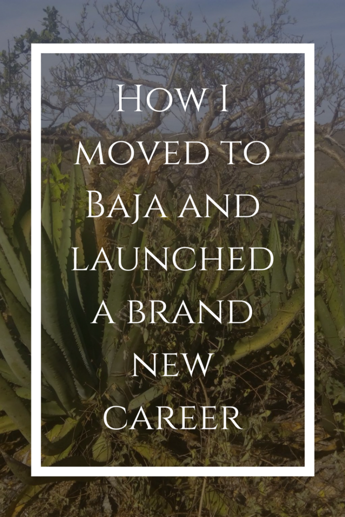How to move to Mexico   expats in Mexico   expat life  How I moved to Baja Mexico and launched a brand new business   story   Todos Santos   farmer   farming   How I became a farmer  