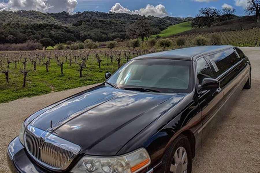 wine-tours_limo_paso_robles_santa_ynez.jpg
