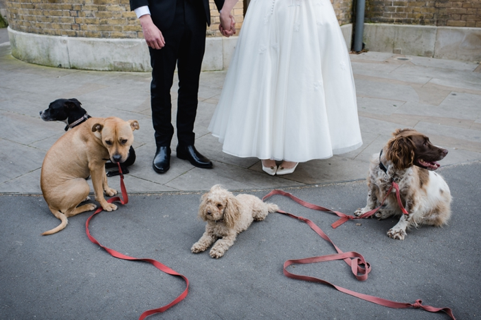 dogs at weddings_0015
