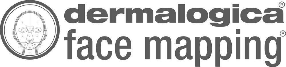 Face_Mapping_Logo_279.jpg