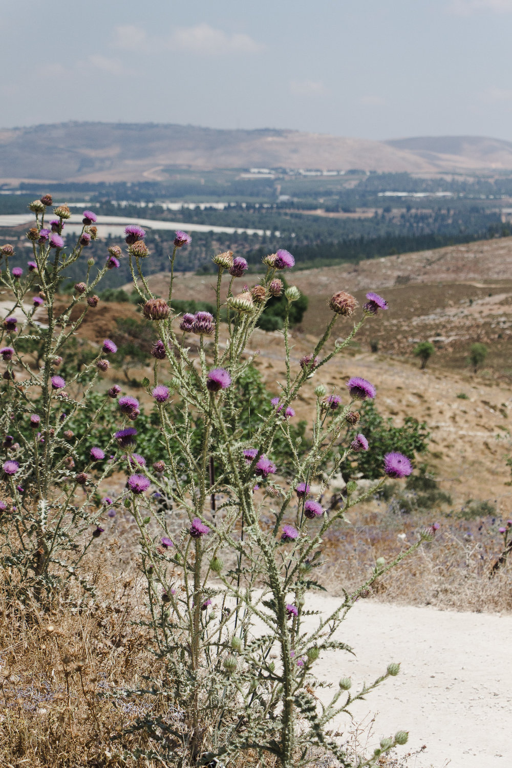 In the Aramaic-Maronite Village, Jish - The Aramean Christians in Israel work to end persecution and preserve their culture — especially their language, which is known to have been spoken by Jesus of Nazareth. Read + See More