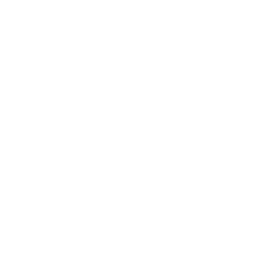 Wild Vessel Logo all white with type-04-05.png