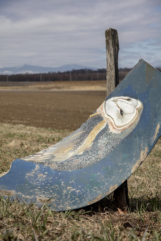© Tim Davis, Owl Sign, Upstate Event Horizon