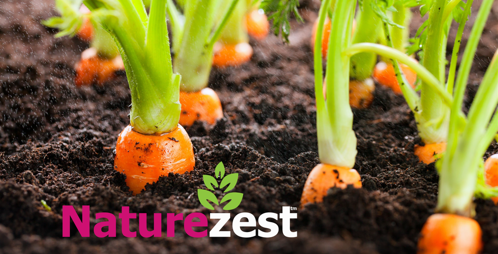 Naturezest helps home gardeners grow healthier, brighter and more flavourful fruit, vegetables and flowers.
