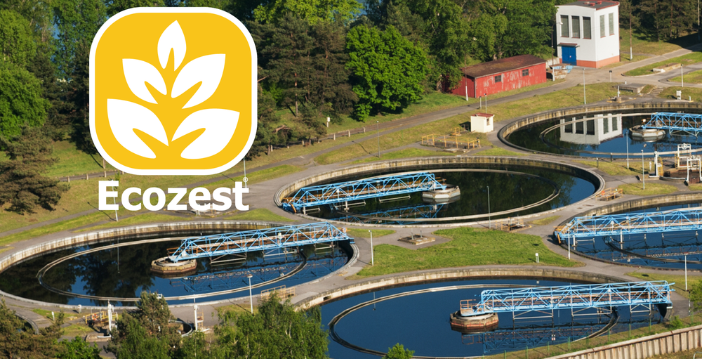 Ecozest for wastewater treatment and bioremediation