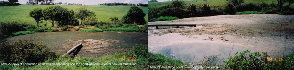 ecozest-sludge-reduction-in-farm-ponds.jpg