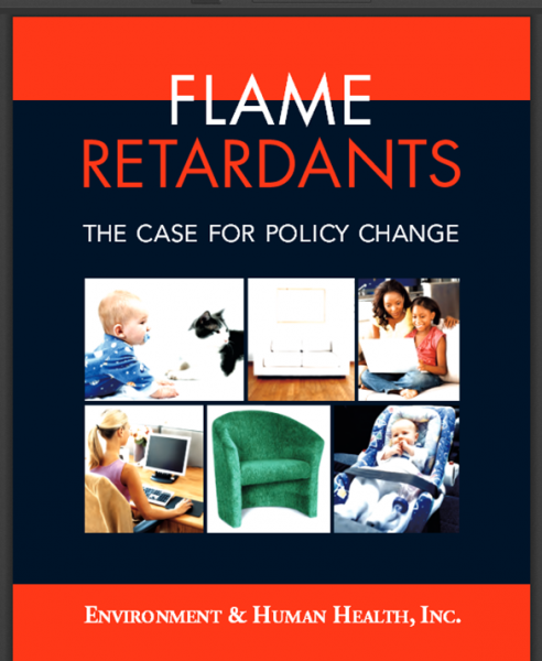 flame report