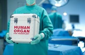 Organ-transplant-300x193