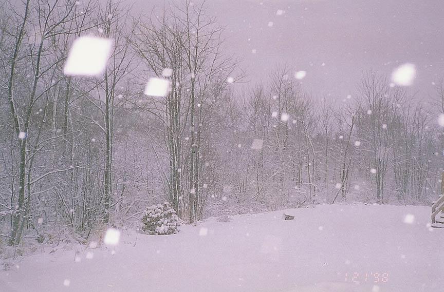 summertime-cottages-winter-1.jpg