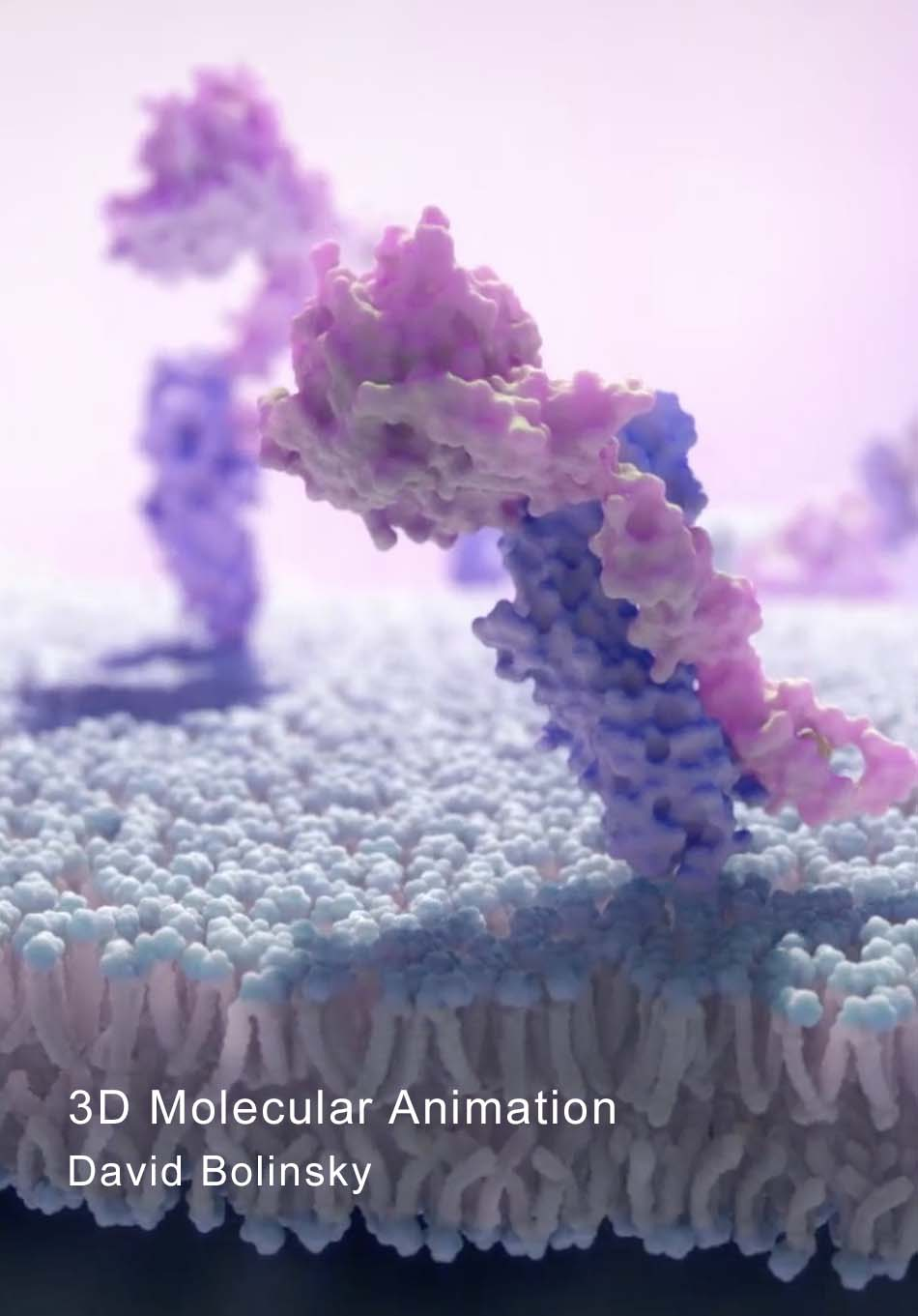David Bolinsky's animations of molecular machinery in neurons and somatic cells will be featured in video format as well as in print.