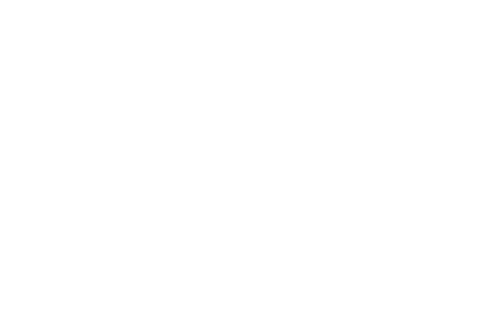 OFFICIAL SELECTION - Cinequest Film Festival - 2016 copy.png