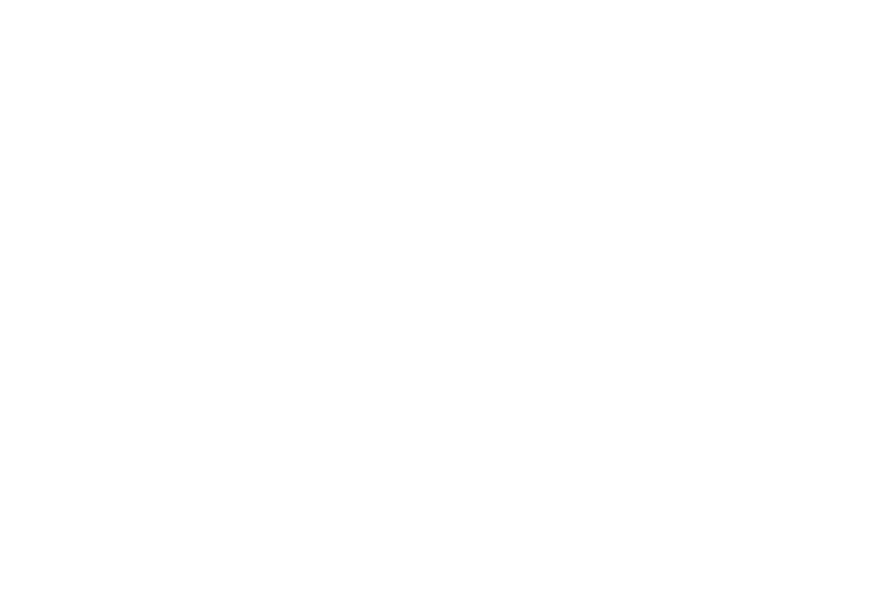 OFFICIAL SELECTION - Film Invasion LA Film Festival - 2016.png