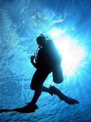 Enriched Air Diver Specialty Course - $200.00($150.00 if taken in conjunction with the Open Water or Advanced Open Water Courses)The PADI Enriched Air Diver course is PADI's most popular specialty scuba course. Why? Because scuba diving with enriched air nitrox gives you more no decompression time, especially on repetitive scuba dives. If staying down longer and getting back in the water sooner sounds appealing, then don't hesitate to become an enriched air diver. Fees include a dive pass, instructor fees, air fills, and all rental gear. PADI E-Learning is paid directly to PADI, it is not included in this price. PADI Crew Packs are available upon request, contact Dive Shop for pricing.If you're a PADI (Junior) Open Water Diver who is at least 12 years old, you can enroll in the Enriched Air Diver Specialty course.