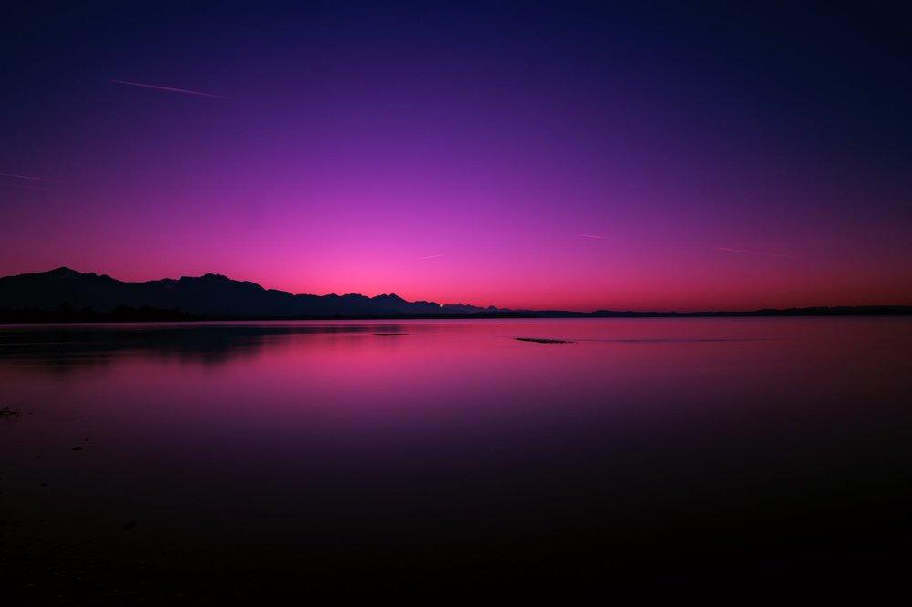 purple banner 2.jpeg
