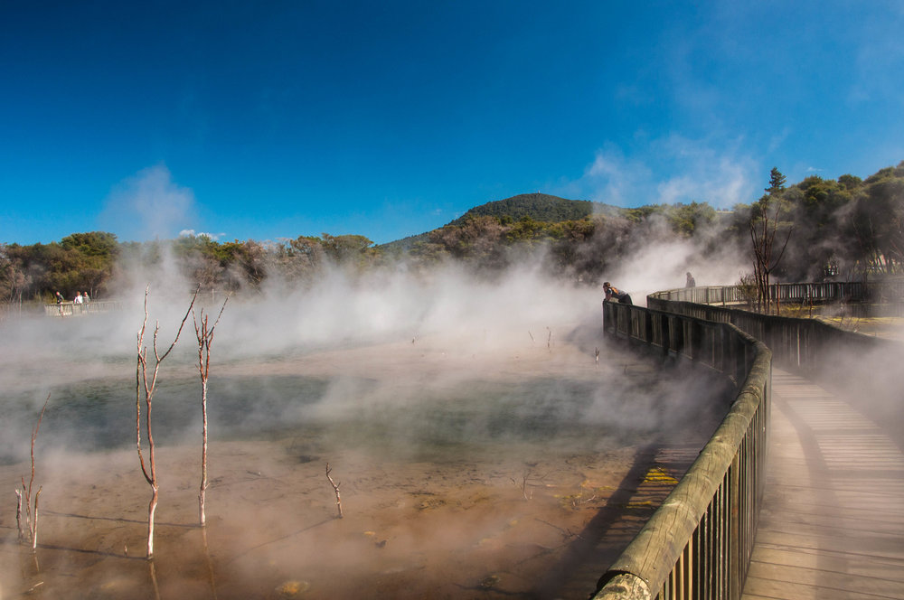 Steaming Lake at the free Kuirau Park in Rotorua