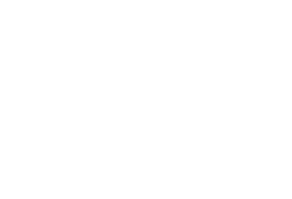 Indigenous Media Caucus