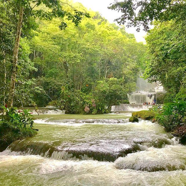 Find your natural beauty, and enjoy it! 🌺🌿🦋 We always enjoy a special trip to #YSFalls 💦 . #CoralCottageJamaica🌴🌊☀️ . . . . . . . . . .  #Jamaica #Travel #Vacation #VacationHome #Tourism #Explore #WanderLust #TravelBug #TravelTips #TravelJamaica #Paradise #Luxury #Passport #Getaway #PhotoOfTheDay #TravelDeeper #RoundTheWorld #BestInTravel #Tropical #Caribbean #OneLove #Jamaican #GoodVibes #SpringBreak #Retreat #FunInTheSun #Negril