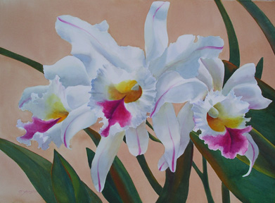 Orchid Trio   SOLD