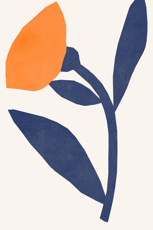 GRAPHIC FLOWER F5.jpg